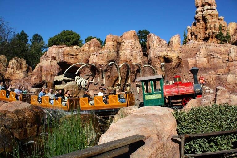 Rides at Disney World – How to Maintain Safety During Covid-19?