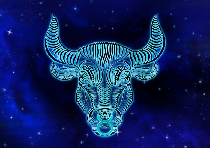 Taurus Man In Bed | All You Need To Know Before Dating