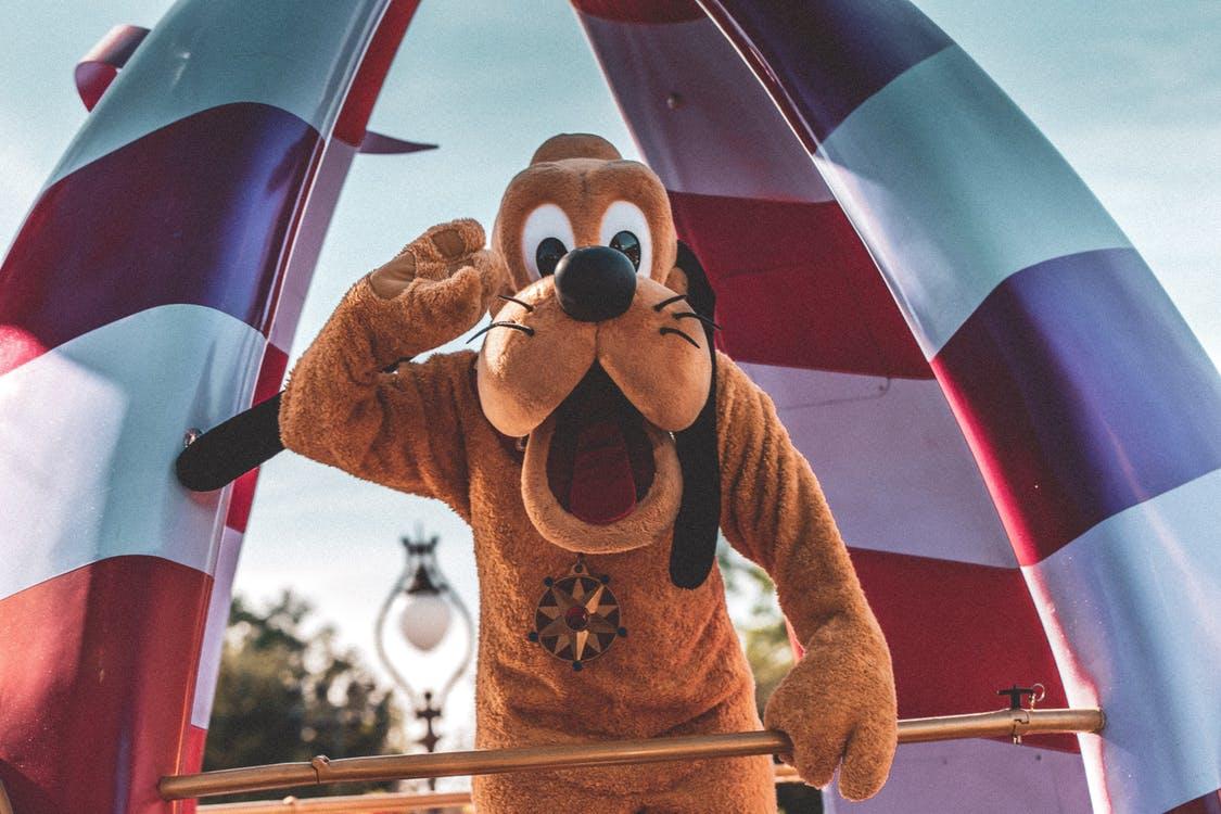 Disney World No Mask Policy